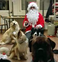 Weihnachtsmann-Timo